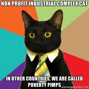 nonprofitcat